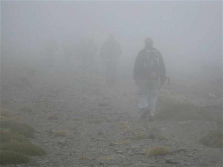 en-la-niebla.jpg