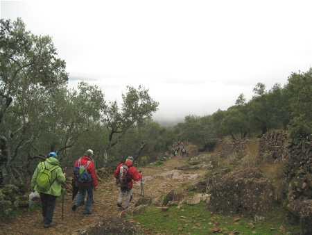 bonales-blog-5.jpg
