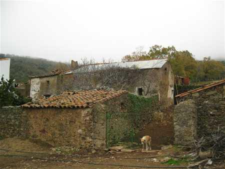 bonales-blog-8.jpg