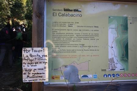 blog-calabacino.jpg