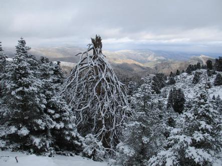 sierra-de-las-nieves-6.jpg