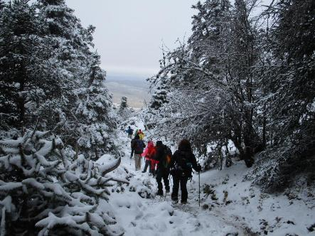 sierra-de-las-nieves-7.jpg